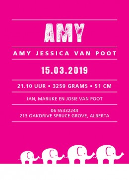 Geboortekaartje Amy