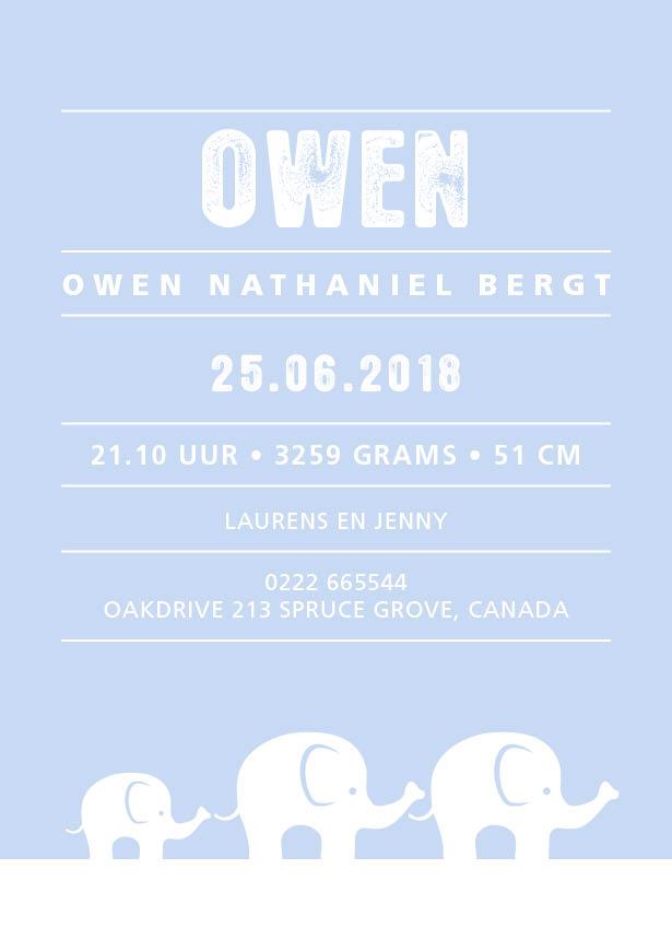 Owen Baby Blue
