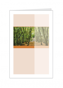bos-kleine-kaart