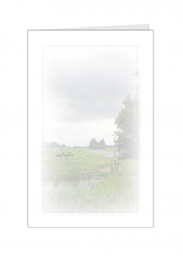 koeienwei-kleine-kaart