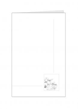 paardenbloem klein-kleine-kaart