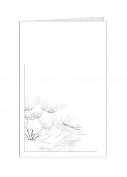 paardenbloem-kleine-kaart