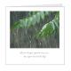 regendruppel-vierkant