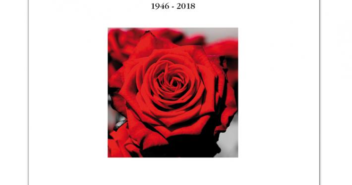 rode-roos-vierkant