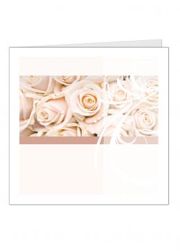 rozen-vierkant