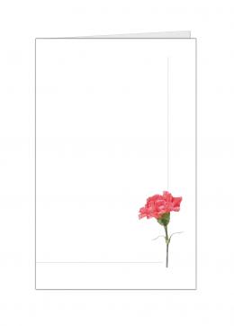 staande-anjer-kleine-kaart