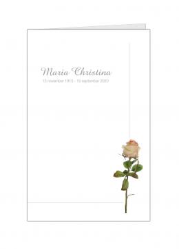 staande-roze-roos-kleine-kaart