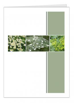 tuinbloemen-a5