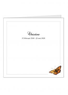 vlinder-vierkant