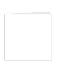 vierkante-kaart_web